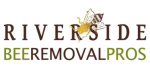 Riverside Bee Removal Pros